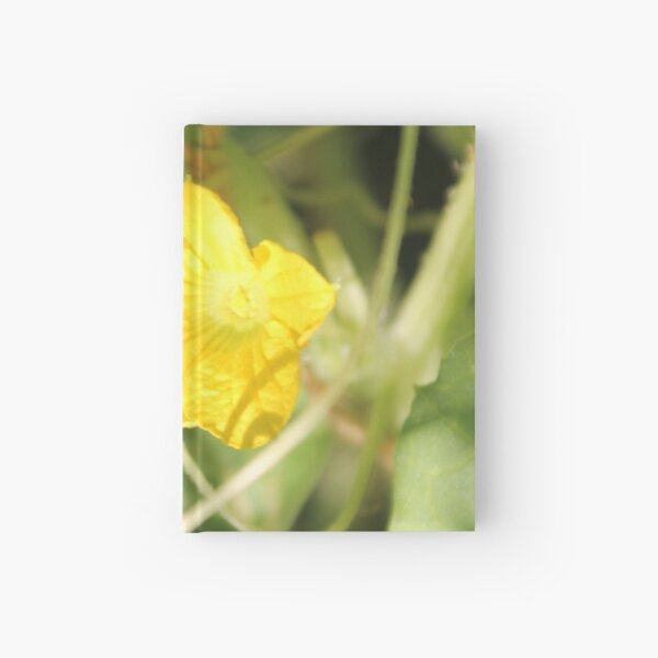 Yellow unnamed flower on a background of green leaves Hardcover Journal