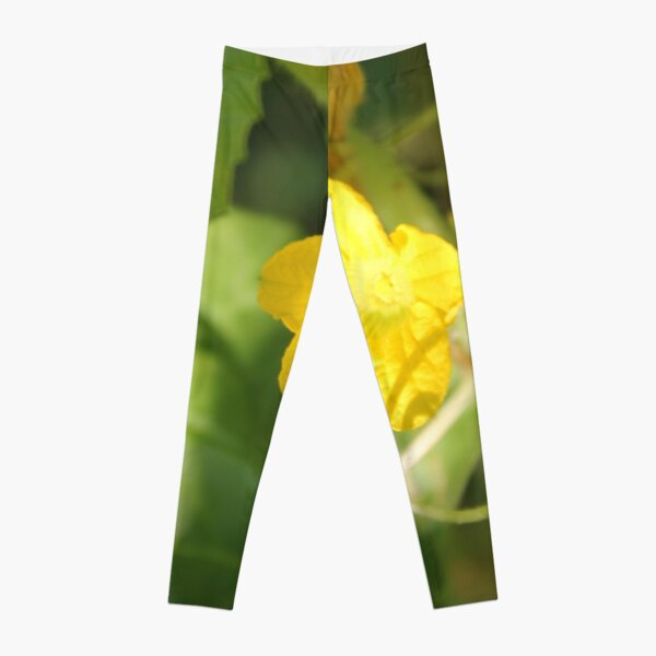 Yellow unnamed flower on a background of green leaves Leggings