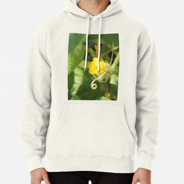 Yellow unnamed flower on a background of green leaves Pullover Hoodie
