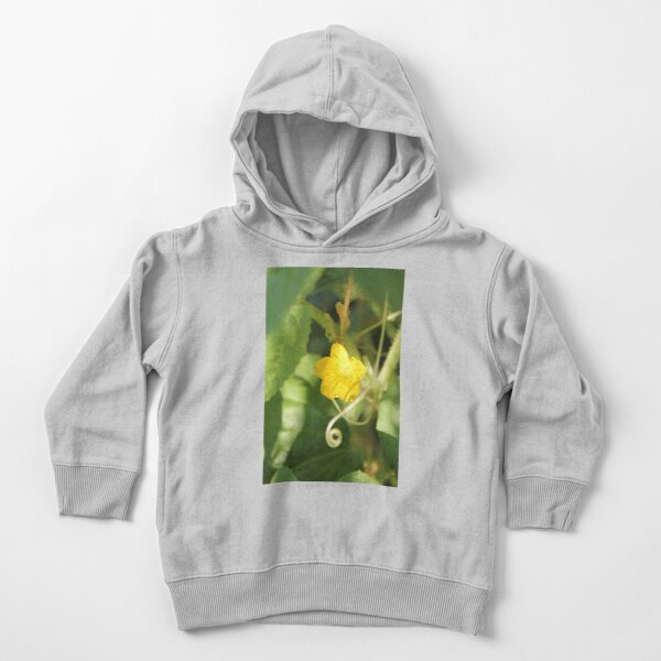 Yellow unnamed flower on a background of green leaves Toddler Pullover Hoodie