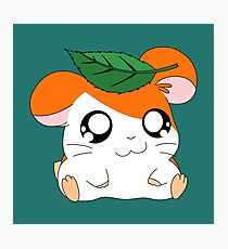 Hamtaro with Leaf Photographic Print