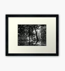 Wonderland ! Framed Print