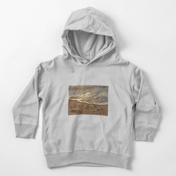 Sea foam, wave, sand, small stones Toddler Pullover Hoodie
