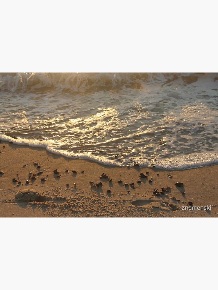 Sea foam, wave, sand, small stones by znamenski