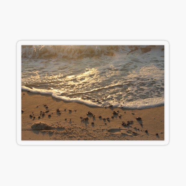 Sea foam, wave, sand, small stones Transparent Sticker