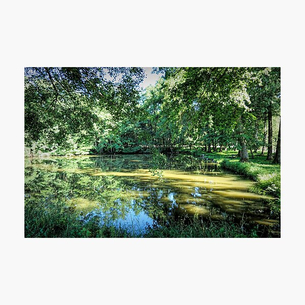 Quiet Spot by the Lake Photographic Print