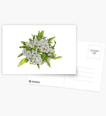 Charlotte's Bouquet Postcards