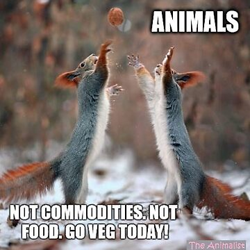 Animals are not commodities by Workshopisme