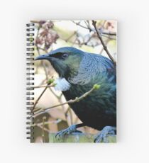 Don't Look At Me - Tui - NZ Spiral Notebook