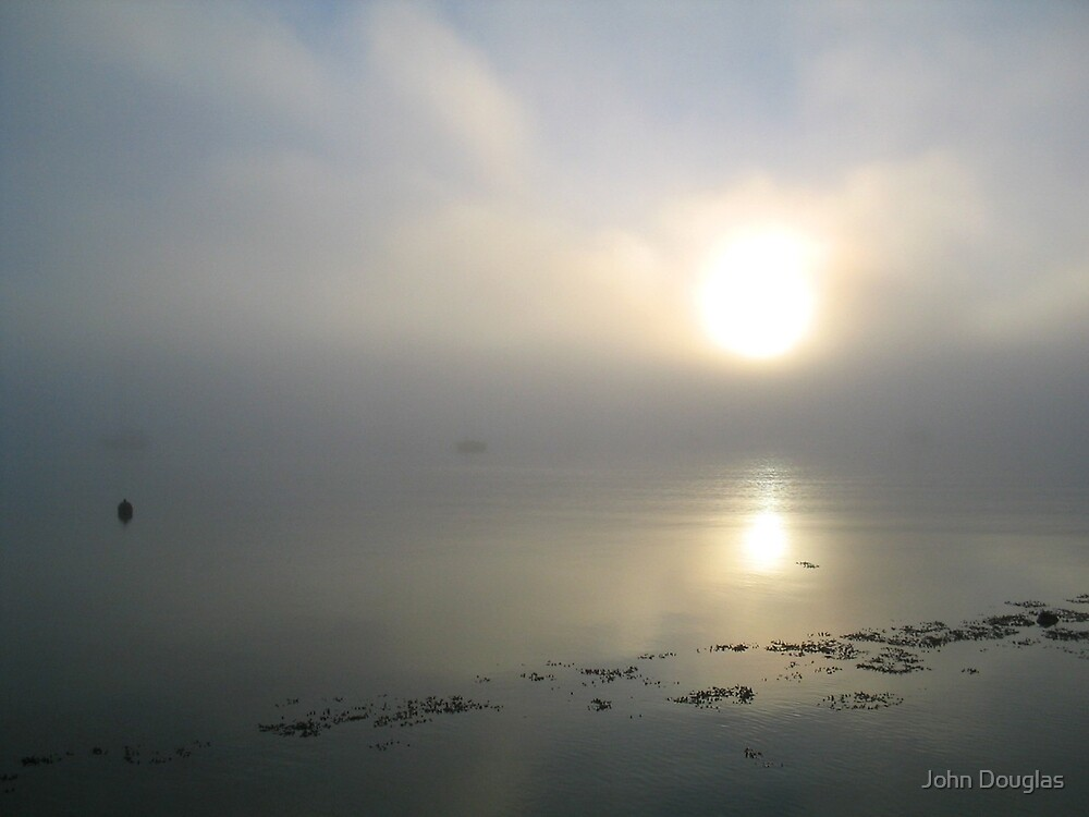 Early Morning, Tasmania by John Douglas