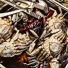 Fresh Crab At The Market by Bo Insogna