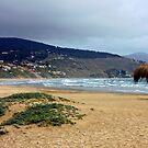 Chile - Cachagua / 2 - (Valparaiso region) by Daidalos