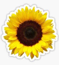 Pegatina Sunflower