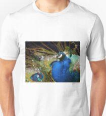 In own luxury T-Shirt