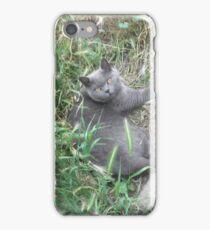 Borris in the grass iPhone Case/Skin