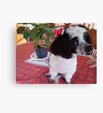 Sweet Puppy Canvas Print