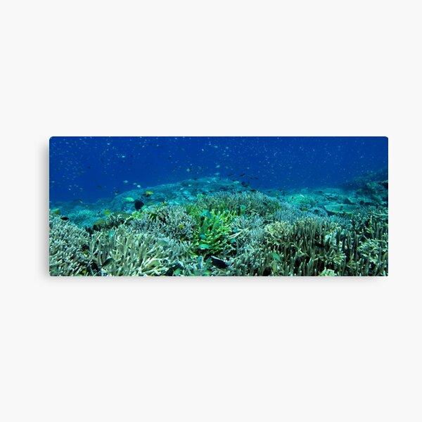 Reef Flat at Saru Namu-Namu Island. Canvas Print