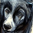Madge the Border Collie by West50East