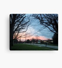 Blue and pink sky with trees and grass Canvas Print