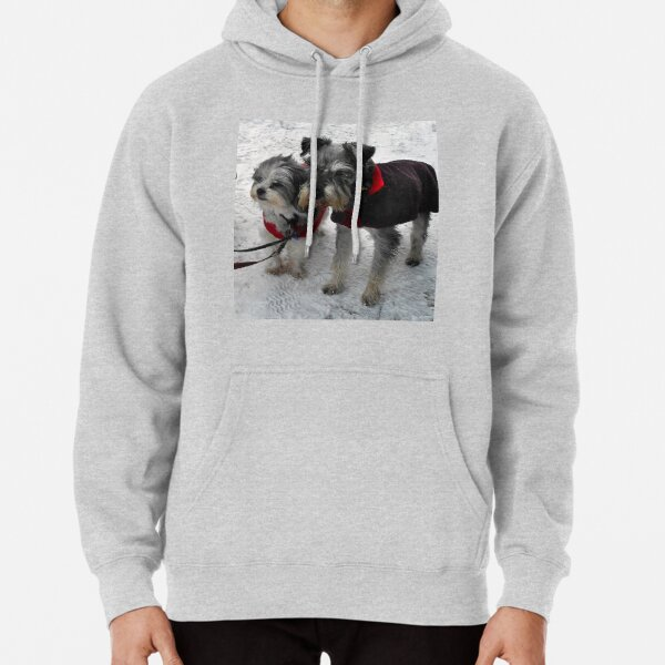 Freeze a jolly good fellow (or two) Pullover Hoodie
