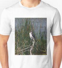 Cormorants T-Shirt