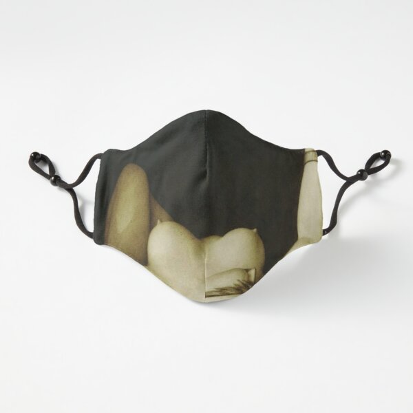 Fitted Masks, Jean-Jacques Lequeu Fitted 3-Layer
