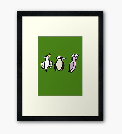 Cockatoo, Kookaburra, Galah Trio Framed Print