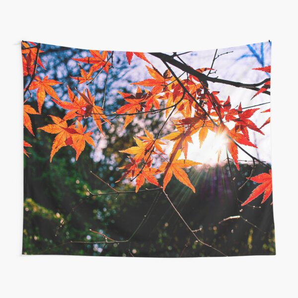 Photography - The sun tries to reach me Tapestry