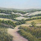 Path to Newlands Corner, Surrey Hills by Fiona Cross