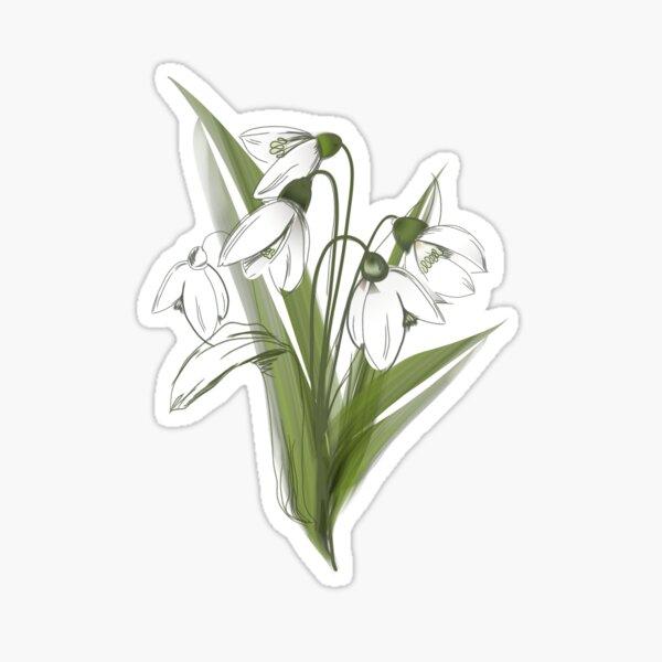 Snowdrop- Winter flower Sticker