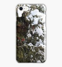 Flagstaff Cold iPhone Case/Skin