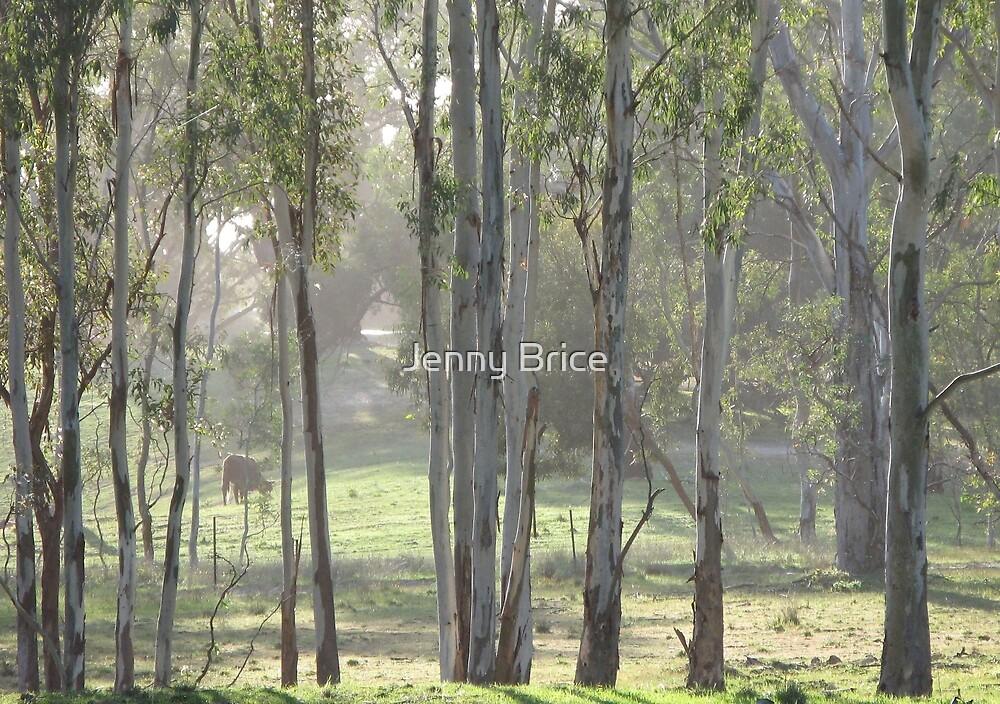 Misty September Morning by Jenny Brice