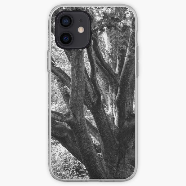 Tree of time iPhone Soft Case