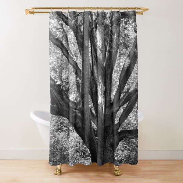 Tree of time Shower Curtain