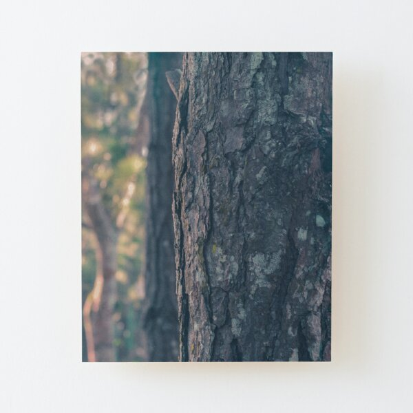 Tree Bark Fantasy Theme Wood Mounted Print