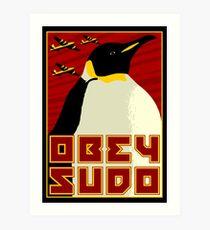 Obey SUDO Art Print