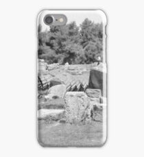 Fallen Columns, Olympia, Greece iPhone Case/Skin