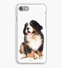 bernese mountain dog puppy iPhone Case/Skin