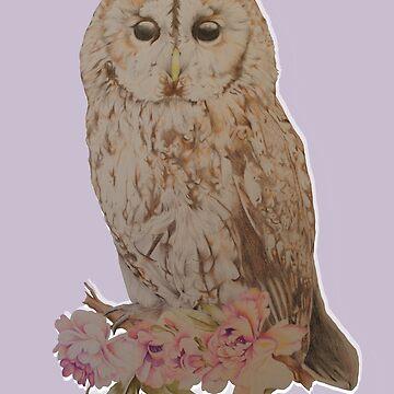 Owl and Flowers by SachikoKawamura