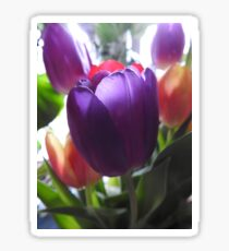 Tulip Sticker