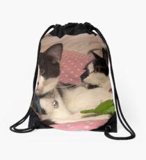 Two kitties Drawstring Bag