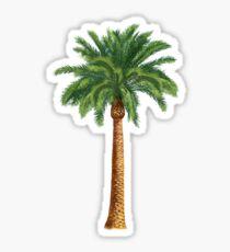 Palme Sticker