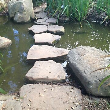 Stepping Stones by Cruffles