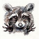 Magic! // Raccoon by AnnaShell
