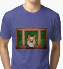 Can I come in Tri-blend T-Shirt