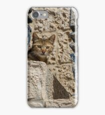 Cat on ancient stairs iPhone Case/Skin
