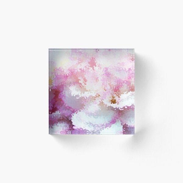 Pink Carnation Cloud - Whispy Acrylic Block