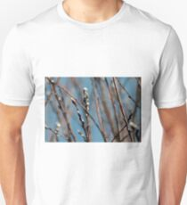 Pussy willow branches Unisex T-Shirt