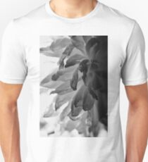 Flower Close Ups - Black/White - One T-Shirt