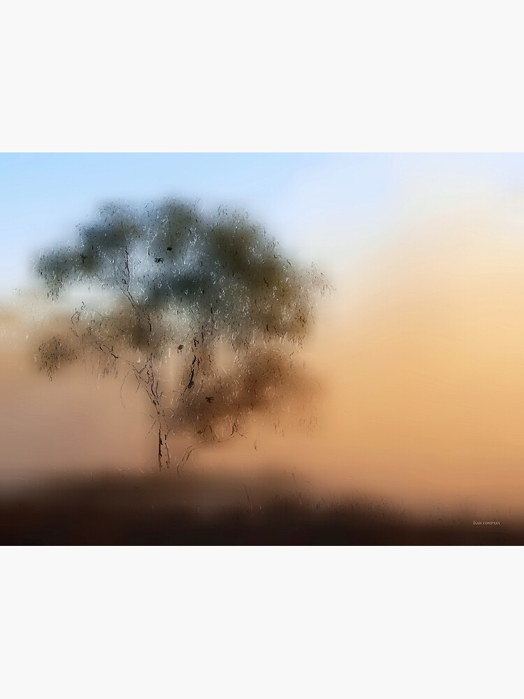 Meet Me At The Old Foggy Tree by iSAWcompany